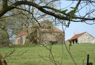tymawr-convent-grounds-garden02