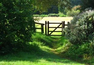 tymawr-convent-grounds-garden04